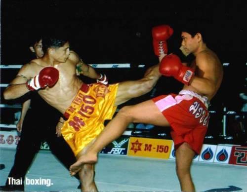 Бокс картинки тайский бокс картинки